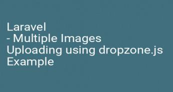 Laravel - Multiple Images Uploading using dropzone.js Example