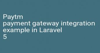 Paytm payment gateway integration example in Laravel 5