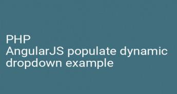 PHP AngularJS populate dynamic dropdown example