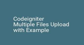 Codeigniter Multiple Files Upload with Example